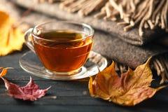 Otoño, hojas de la caída, taza de café caliente y una bufanda caliente en woode Imagen de archivo