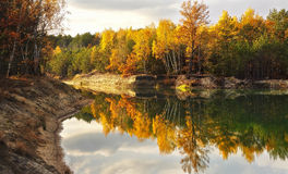otoño la madera en el lago fotos de archivo