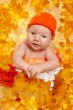 Otoño recién nacido Escena del tiempo del otoño poco bebé con amarillo rojo fotos de archivo