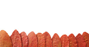 Otoño rojo Fotografía de archivo