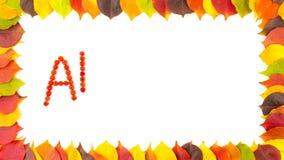 Otoño Sorba Marco de la frontera de hojas otoñales coloridas animación 4K stock de ilustración