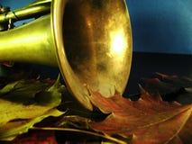 Otoño still-life5 Foto de archivo libre de regalías