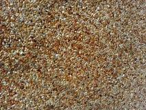 Otoczak kamienna tekstura Fotografia Royalty Free