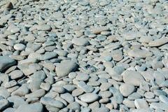 Otoczak plaża na pogodnym letnim dniu, tło, selekcyjna ostrość fotografia royalty free