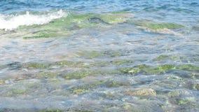 Otoczak plaża z dennymi fala zbiory wideo