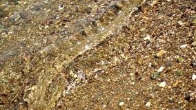 Otoczak plaża z dennymi fala zdjęcie wideo