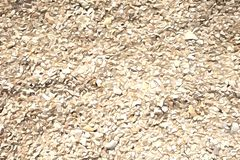 Otoczak tekstury tło w akwareli, otoczaka tło w pastelowym brzmienie kolorze royalty ilustracja