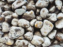Otoczak zewnętrznej ściany kamienny tło zdjęcie royalty free