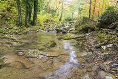 Otoño en el río Foto de archivo libre de regalías