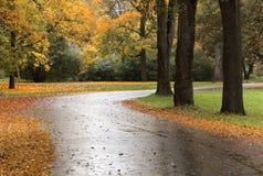 Otoño road-2 Fotografía de archivo libre de regalías