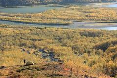 Otoño ártico Imagen de archivo libre de regalías