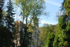 Otręby kasztel w Karpackich górach obrazy royalty free