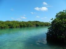 Otro a la una de los lagos más famosos de cancun imagenes de archivo