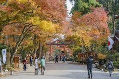Beautiful fall color of Hiyoshi Taisha. Otsu, NOV 23: Beautiful fall color of Hiyoshi Taisha on NOV 23, 2017 at Otsu, Shiga, Japan Stock Image