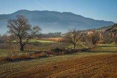 Otta i bergen, fältet och dimman Arkivbild