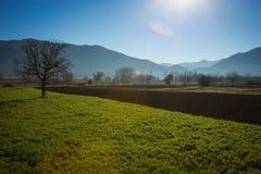 Otta i bergen, fältet och dimman Royaltyfria Bilder