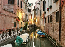 Otta i Venedig Royaltyfria Foton