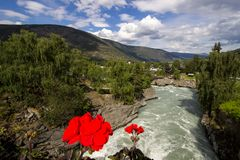 Otta River in Lom in Norway. Otta river and flowers near church in Lom in South Norway Royalty Free Stock Photo
