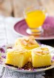 �ottage cheese  semolina cake Stock Images