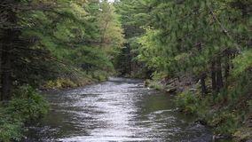 Ottaplats på den Mississauga floden lager videofilmer