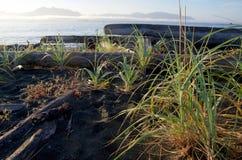 Ottasikt av den Vancouver ön från stranden på den Catala ön, British Columbia Royaltyfri Foto