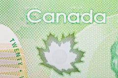 Ottawa, Canadá, Avril 13, 2013, close up extremo de notas de dólar novas do polímero vinte Fotografia de Stock Royalty Free
