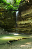 Ottawa Canyon, Starved Rock State Park, Illinois. Waterfall and cliff walls with tree trunk as the summer morning light hits the sandstone canyon.  Ottawa Stock Images
