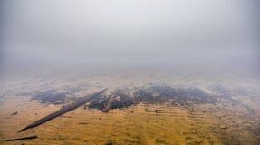 Ottawa flod - undervattens- organiskt drivvedskräp Royaltyfri Foto