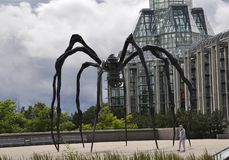Ottawa, il 26 giugno: Parte anteriore del ragno di Art Gallery nazionale dalla città di Ottawa nel Canada Immagini Stock