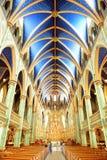 Ottawa Notre Dame Basilica royaltyfri fotografi