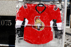 Ottawa Senators jersey Royalty Free Stock Photography