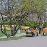 Ottawa Tulip Festival 2012 - Sitting in Park Stock Photo