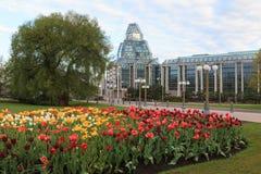 Ottawa Tulip Festival Fotografía de archivo libre de regalías