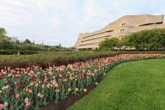 Ottawa Tulip Festival Stockbilder