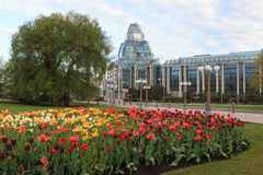 Ottawa Tulip Festival Royalty Free Stock Photography