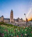 Ottawa tulpanfestival Arkivfoton