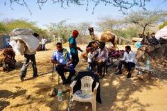 Ottenendo un cammello pronto in Pushkar, l'India Fotografia Stock