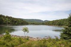 Otter-Bucht im Acadia-Nationalpark Stockfotos