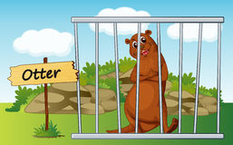 Otter in cage Stock Photos
