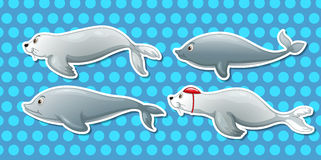 Otter and dolphin. Illustration of dolphin and otter Royalty Free Stock Photography