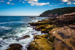 Otter-Klippen und der Atlantik im Acadia-Nationalpark, MAI Lizenzfreies Stockbild