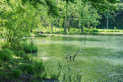 Otter Lake. Located on the Blue Ridge Parkway, Virginia, USA stock photos