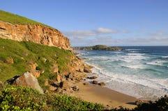 Otter-Wanderweg im Garten-Weg Südafrika Lizenzfreie Stockbilder