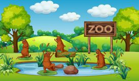 Otter at the zoo. Illustration royalty free illustration