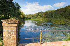 Otterhead Lakes East Devon England uk in the Blackdown Hills. Area of Outstanding Natural Beauty stock photos