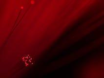 Ottica delle fibre rossa Fotografia Stock Libera da Diritti