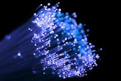 Ottico di fibra brillante blu Fotografia Stock