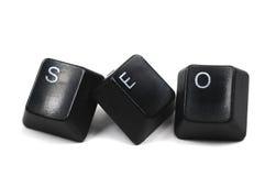 Ottimizzazione di Search Engine Immagini Stock