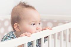 Otto mesi della neonata Fotografie Stock Libere da Diritti