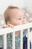 Otto mesi della neonata Fotografia Stock Libera da Diritti
